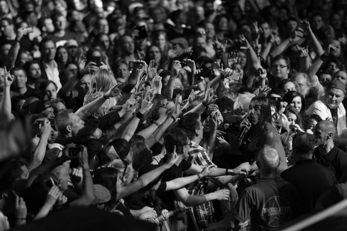 Iggy Pop - Live at the Royal Albert Hall