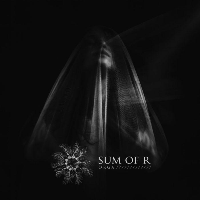 Orga Albumcover
