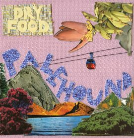 Palehound - Dry Food